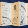 早乙女哲哉「天ぷらは時間、間、呼吸、と小さく刻んだ時を食べる物」